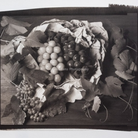 Grapes on a Table-1